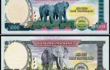 हट्यो अफ्रिकन हात्तीको फोटो